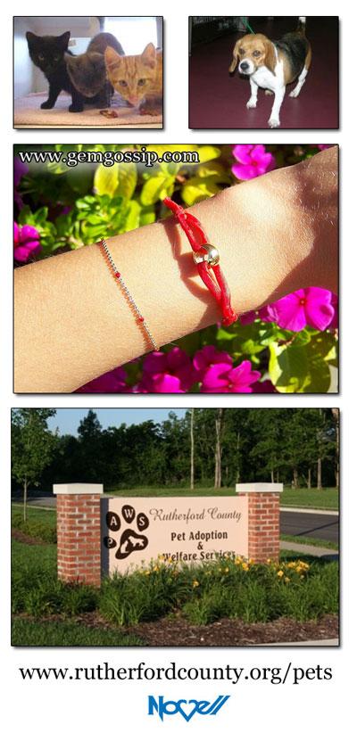 Charity bracelet sold by fashion jewelry blog Gem Gossip. Proceeds benefit the animal organization PAWS.