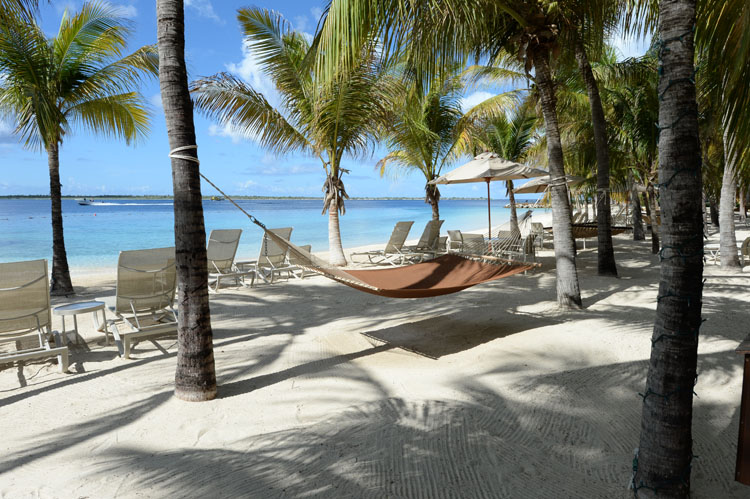 beachside hammocks and chairs   perfect for lounging at harbour village in bonaire honeymoon destinations   the caribbean u0027s bonaire  rh   novelldesignstudio