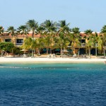 beach and palm trees at one of the great honeymoon destinations in Bonaire.