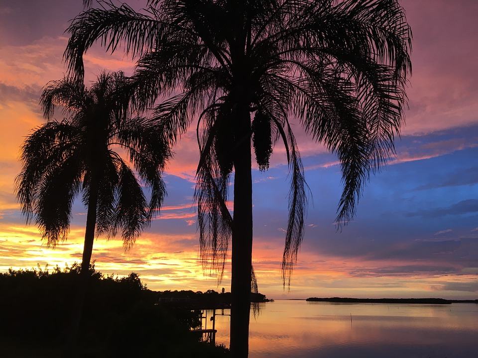 Honeymoon spots like Sarasota have sunsets, beaches and palm trees.